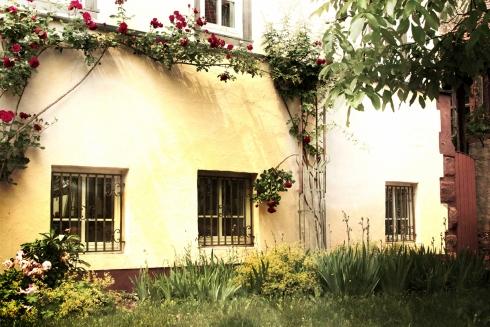 Hof und Garten in Erbach